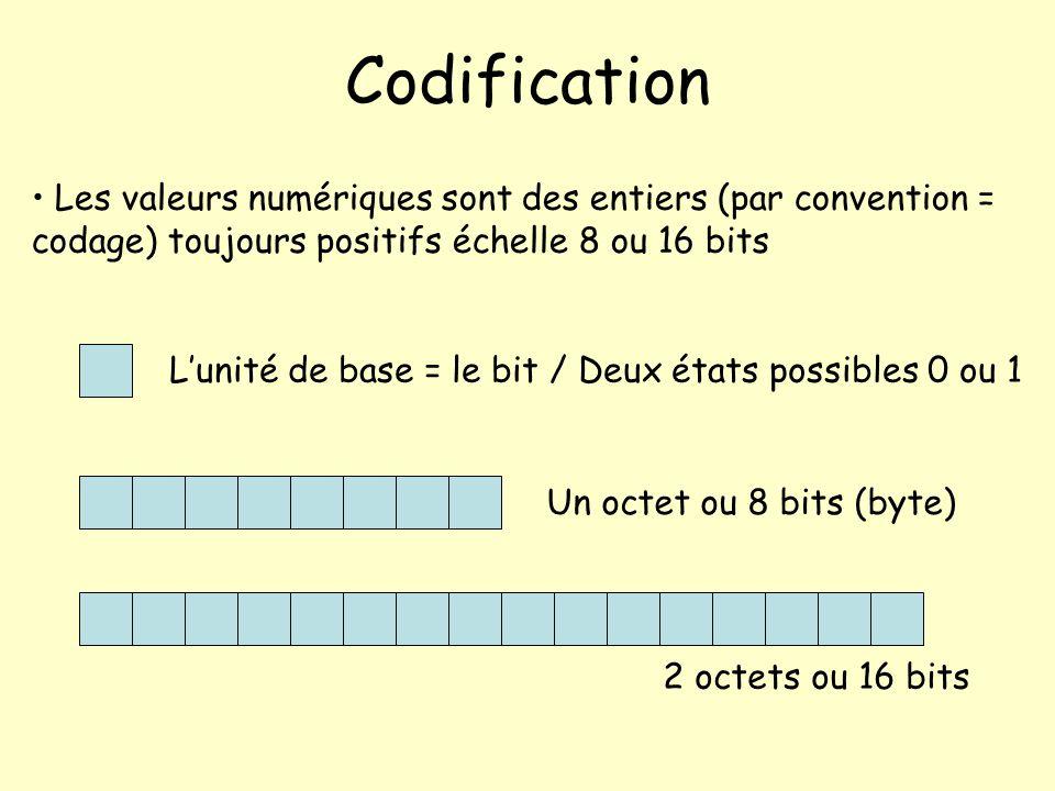 Codification Les valeurs numériques sont des entiers (par convention = codage) toujours positifs échelle 8 ou 16 bits Lunité de base = le bit / Deux é