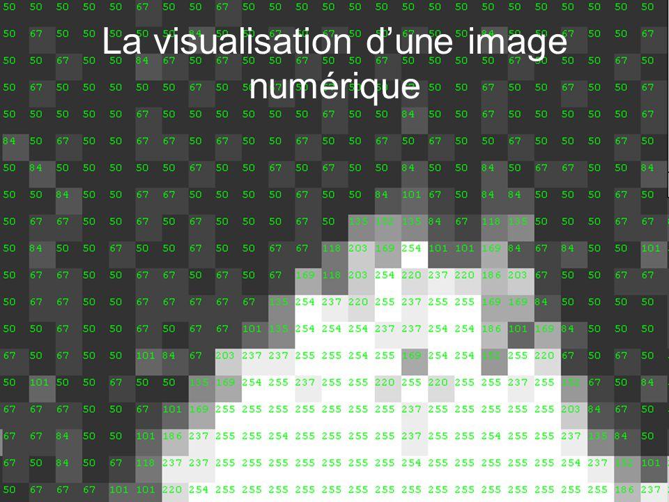 La visualisation dune image numérique
