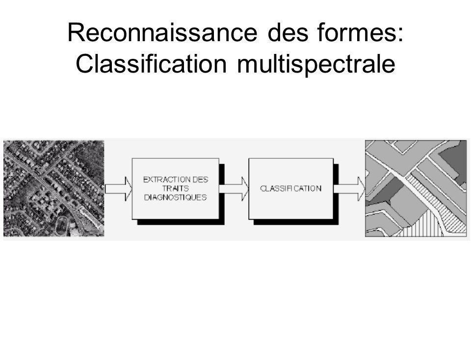 La classification finale selon les échantillons fournis