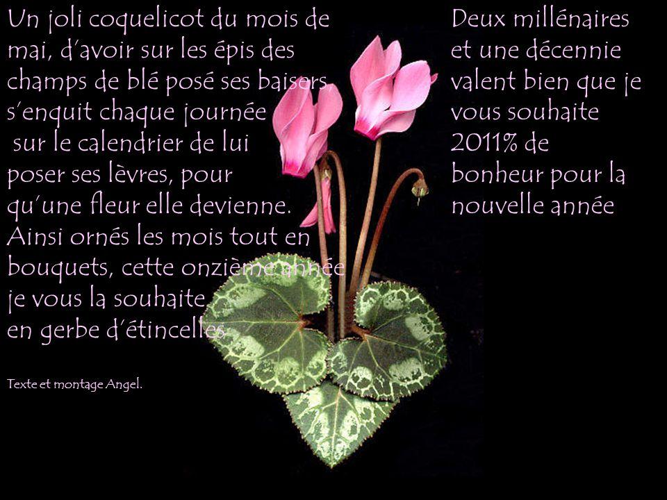Un joli coquelicot du mois de mai, davoir sur les épis des champs de blé posé ses baisers, senquit chaque journée sur le calendrier de lui poser ses lèvres, pour quune fleur elle devienne.