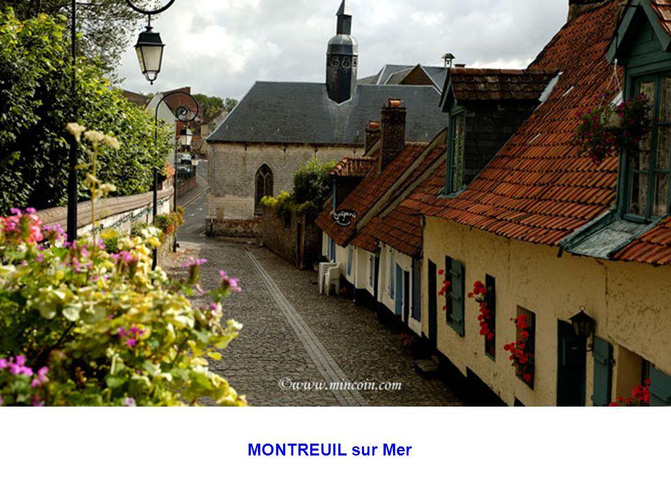 Ste CECILE – Mont St Frieux