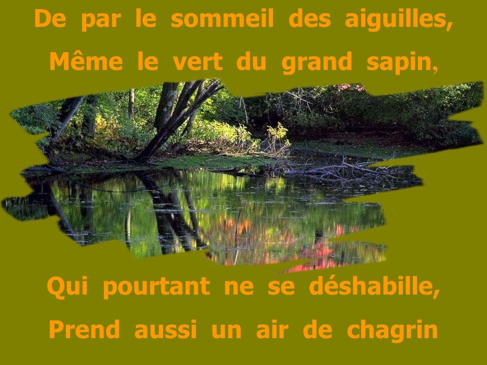 De par le sommeil des aiguilles, Même le vert du grand sapin, Qui pourtant ne se déshabille, Prend aussi un air de chagrin
