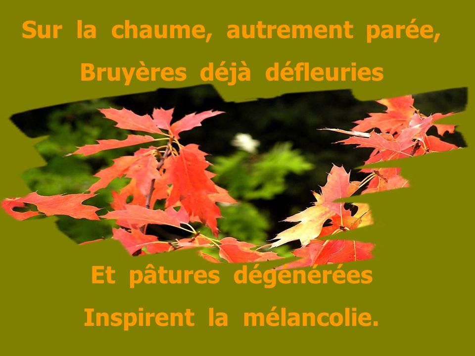 Sur la chaume, autrement parée, Bruyères déjà défleuries Et pâtures dégénérées Inspirent la mélancolie.