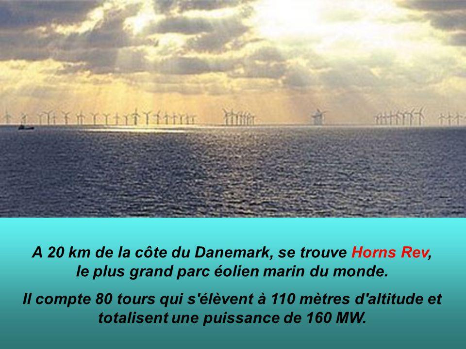 A 20 km de la côte du Danemark, se trouve Horns Rev, le plus grand parc éolien marin du monde. Il compte 80 tours qui s'élèvent à 110 mètres d'altitud