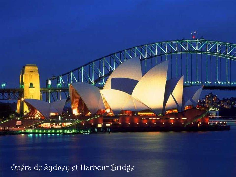 Toits de l Opéra de Sydney