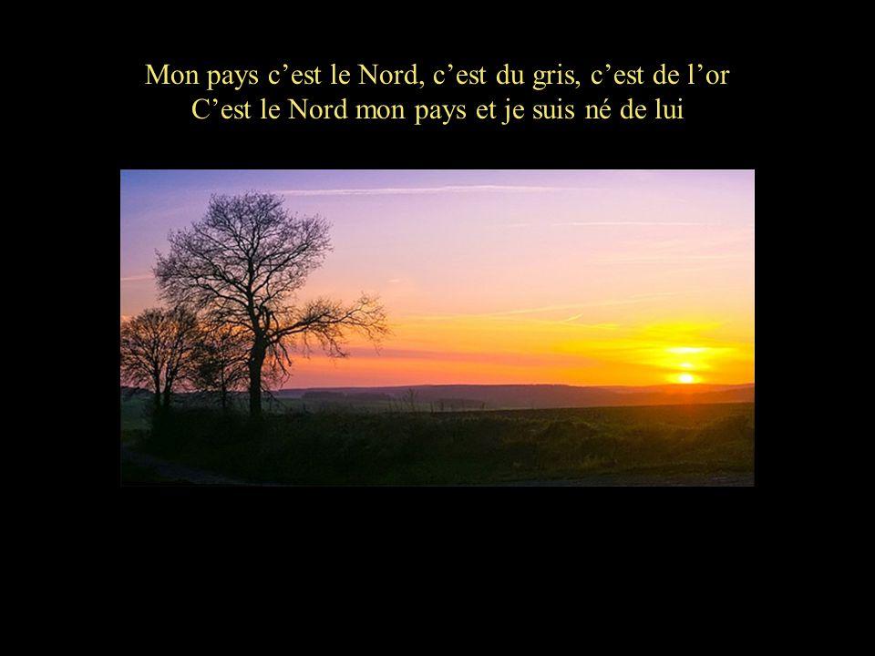 Mon pays cest le Nord Paroles et musique Jean-François Battez Allumez le son, cliquez « ici » et laissez vous charmer …