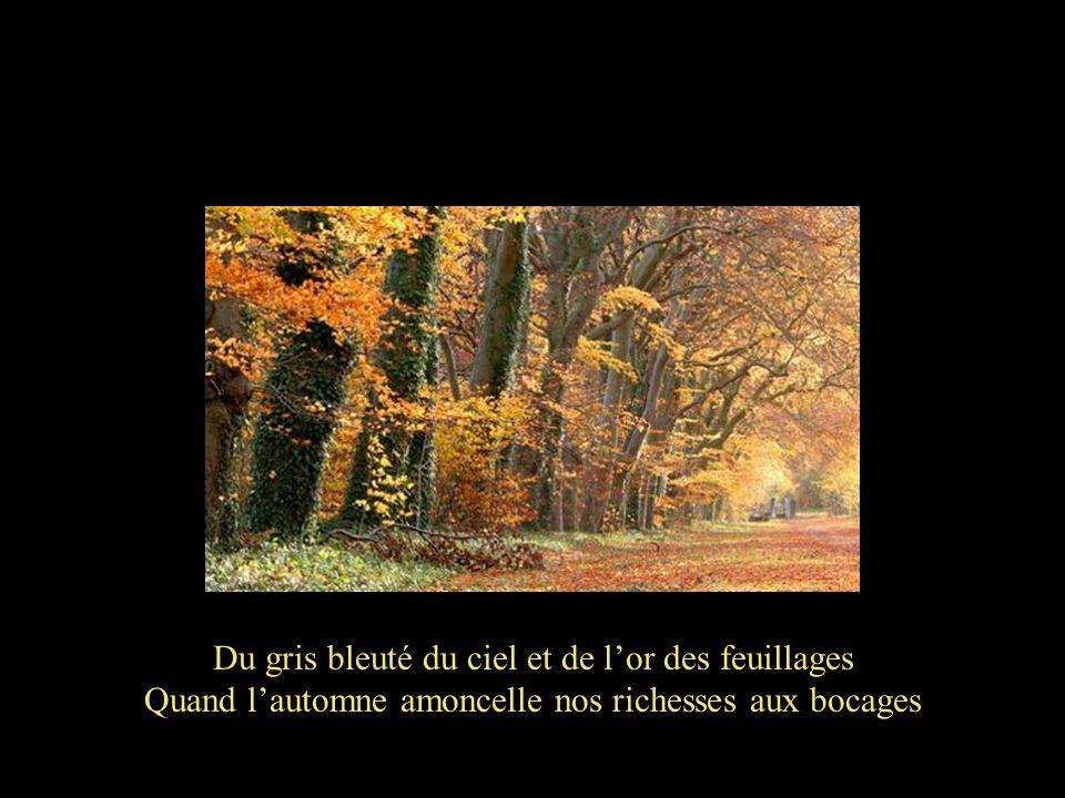 Quand lété, notre cœur, souffle ses derniers vents Nos grands soirs en douceur sétoilent en firmament