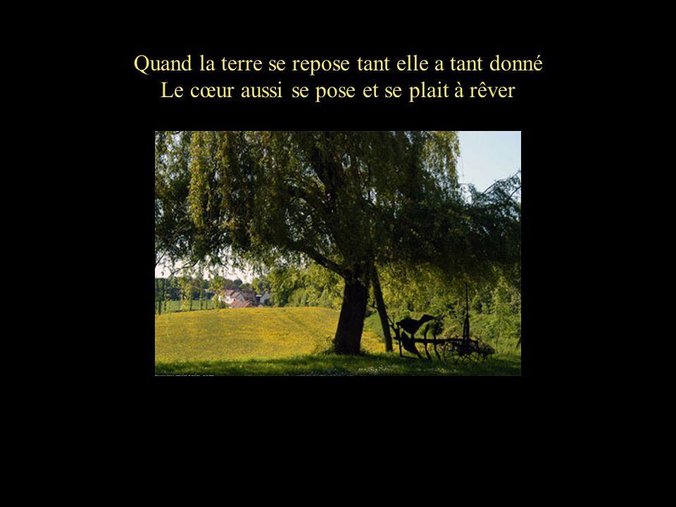 Quand la terre se repose tant elle a tant donné Le cœur aussi se pose et se plait à rêver
