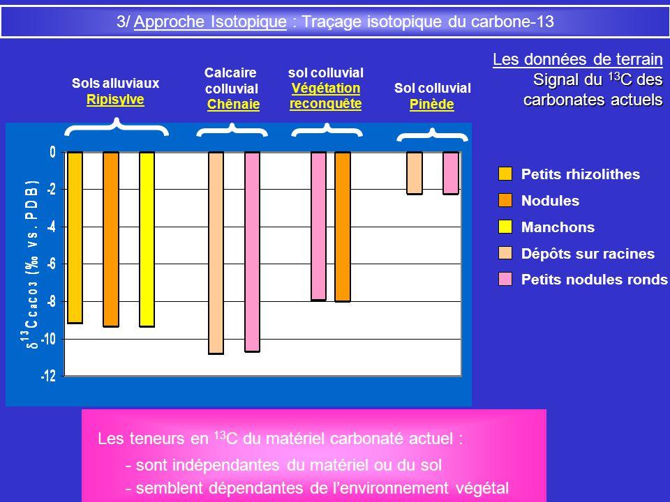 3/ Approche Isotopique : Traçage isotopique du carbone-13 Les données de terrain Signal du 13 C des carbonates actuels carbonates actuels Sols alluvia
