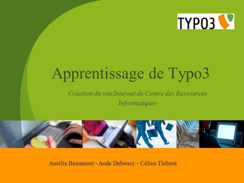 Apprentissage de Typo3 Création du site Internet du Centre des Ressources Informatiques Aurélie Beaumont - Aude Debouzy - Céline Thibaut