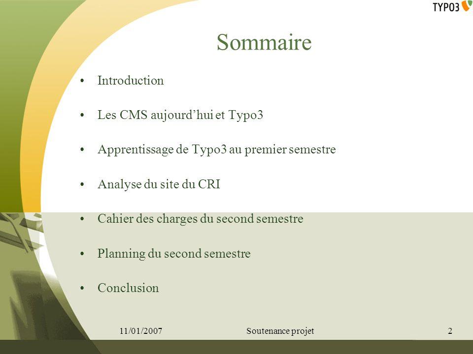 Introduction Pourquoi le sujet Typo3 Apprendre un nouveau langage Sautoformer Travailler en équipe détudiante Réalisation dune application concrète 11/01/20073Soutenance projet