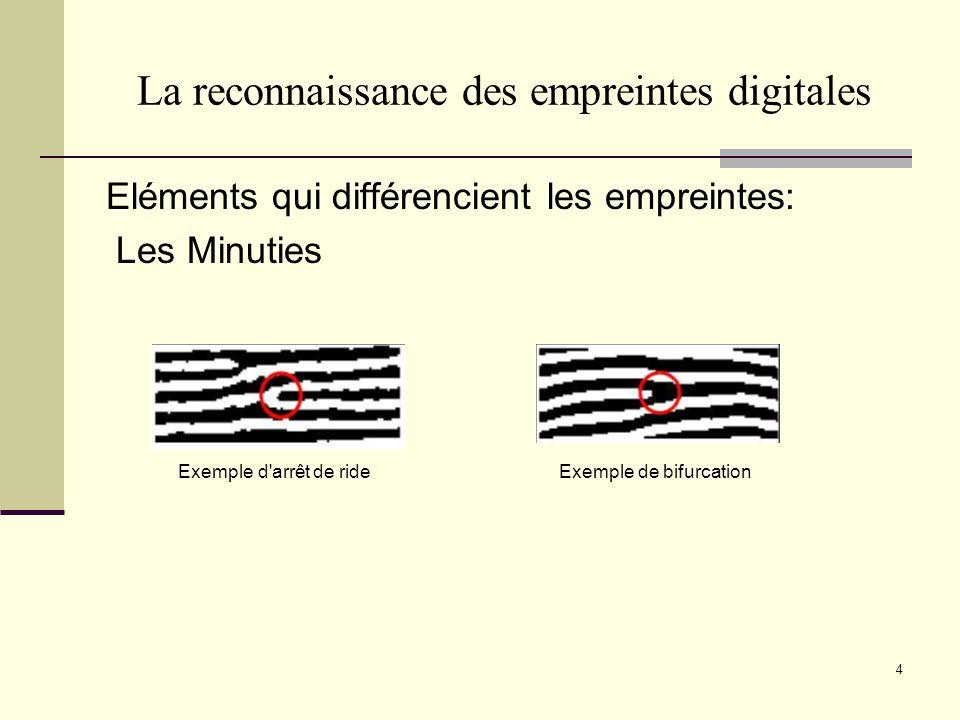 La reconnaissance des empreintes digitales Eléments qui différencient les empreintes: Les Minuties 4 Exemple d'arrêt de ride Exemple de bifurcation
