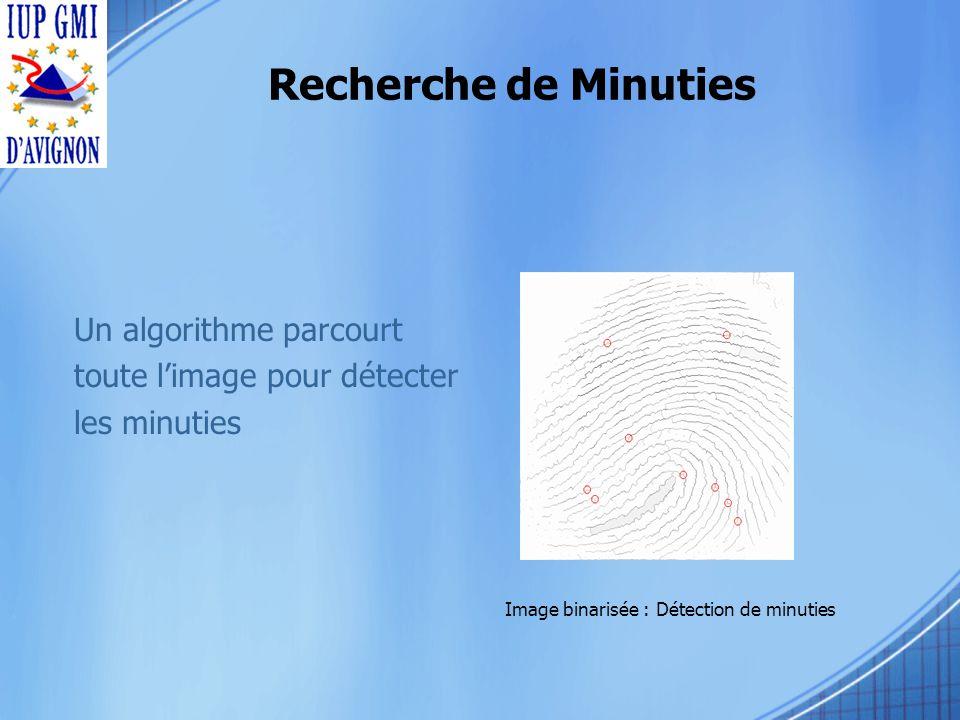 Un algorithme parcourt toute limage pour détecter les minuties Image binarisée : Détection de minuties Recherche de Minuties