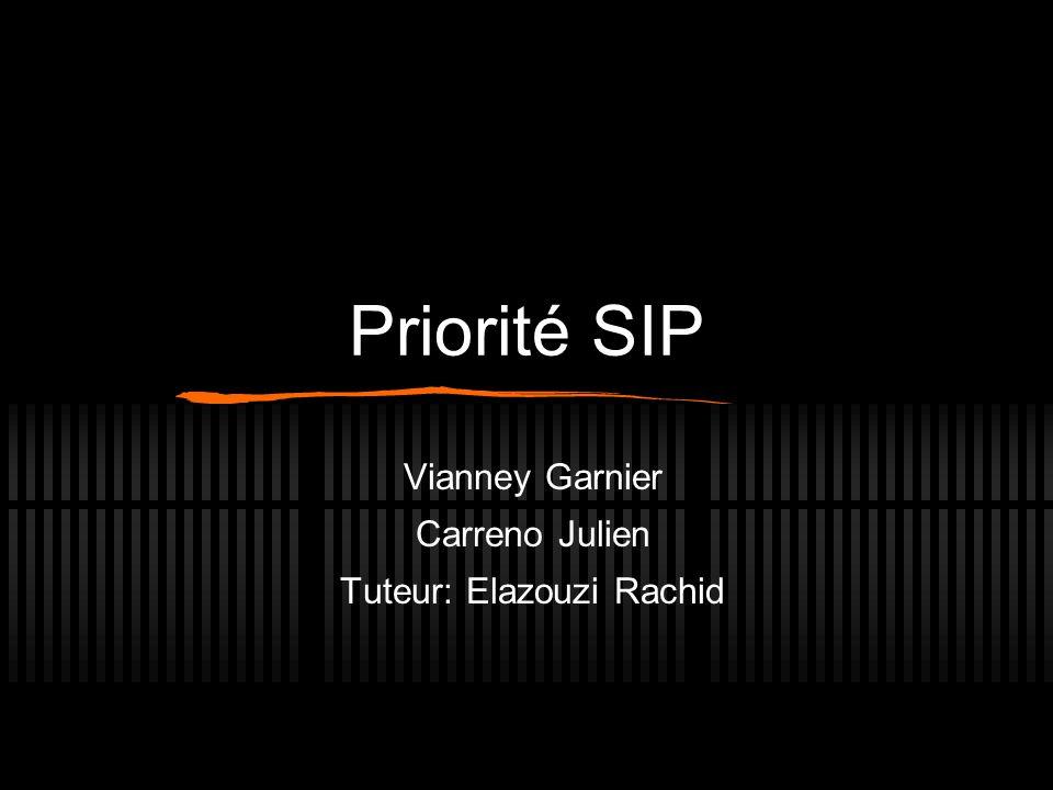 Priorité SIP Vianney Garnier Carreno Julien Tuteur: Elazouzi Rachid