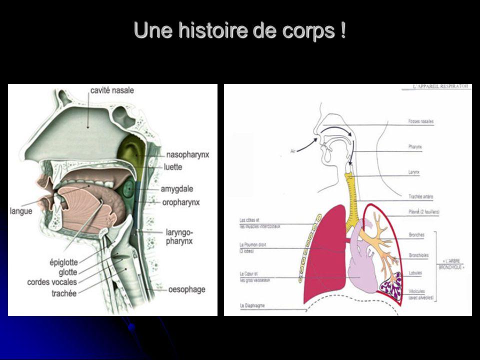 Chanter demande de bien respirer donc de contrôler le travail des muscles respiratoires, ce qui augmente l ampliation thoracique et facilite l expectoration des bouchons muqueux.