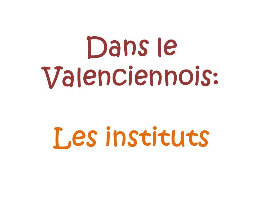 Dans le Valenciennois: Les instituts
