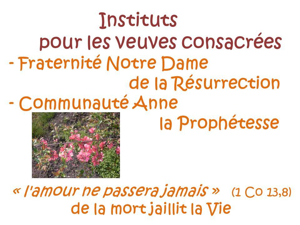 Instituts pour les veuves consacrées - Fraternité Notre Dame de la Résurrection - Communauté Anne la Prophétesse « l amour ne passera jamais » (1 Co 13,8) de la mort jaillit la Vie