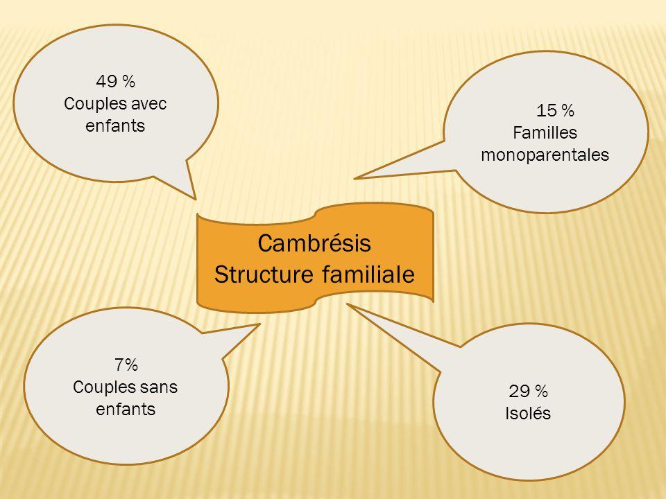 Cambrésis Structure familiale 49 % Couples avec enfants 15 % Familles monoparentales 29 % Isolés 7% Couples sans enfants