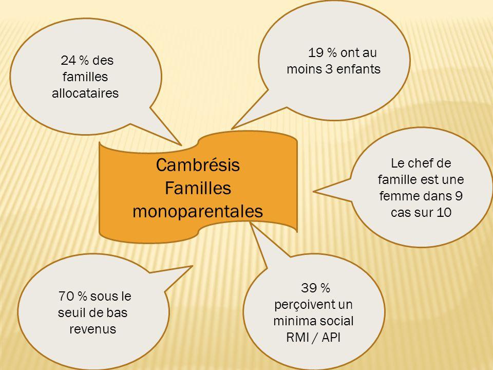 Cambrésis Familles monoparentales 24 % des familles allocataires 19 % ont au moins 3 enfants 39 % perçoivent un minima social RMI / API 70 % sous le seuil de bas revenus Le chef de famille est une femme dans 9 cas sur 10