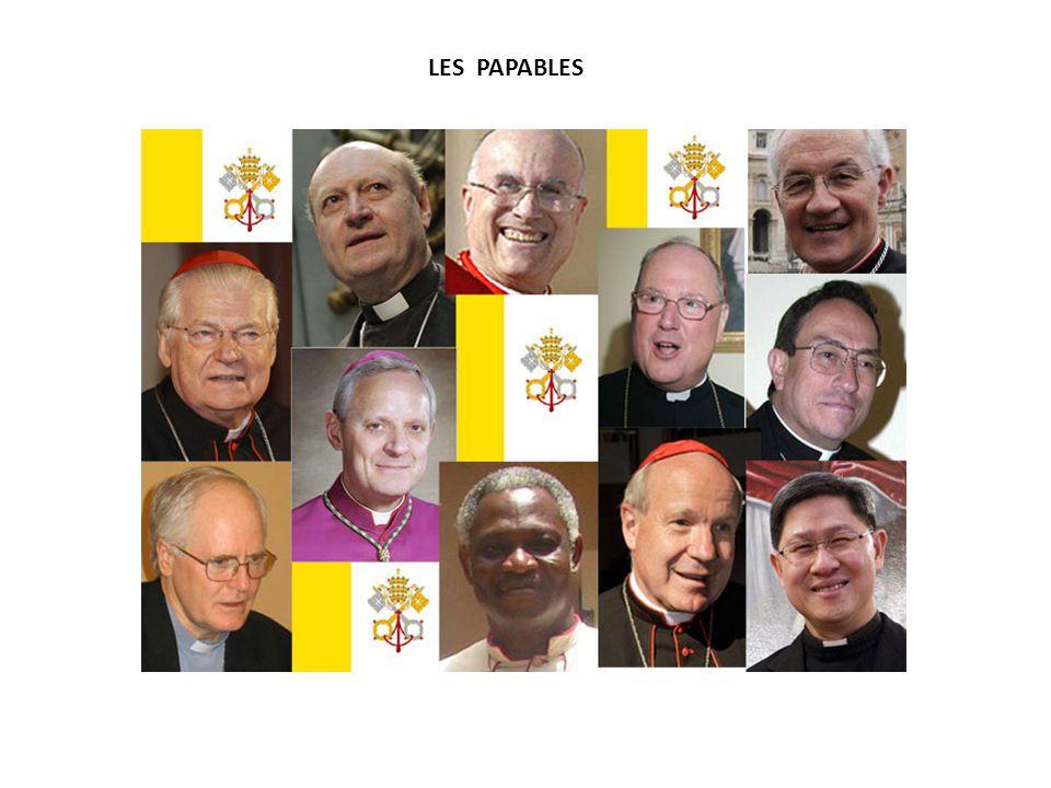 IL REND HOMMAGE A BENOIT XVI ET INVITE LES FIDELES A PRIER