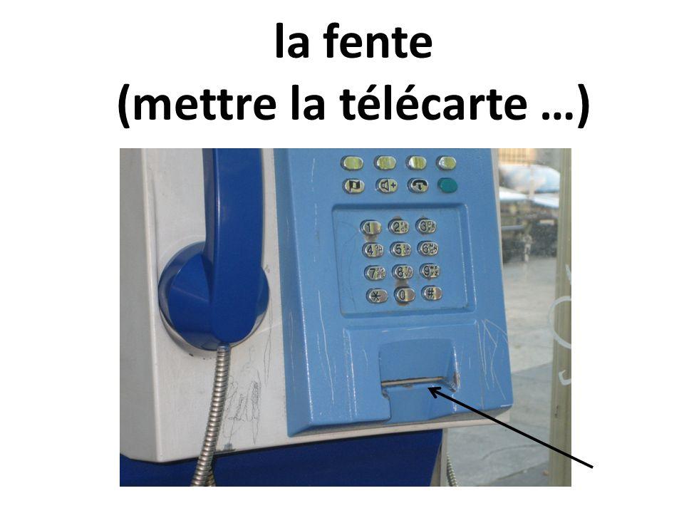 faire un appel téléphonique; donner un coup de fil