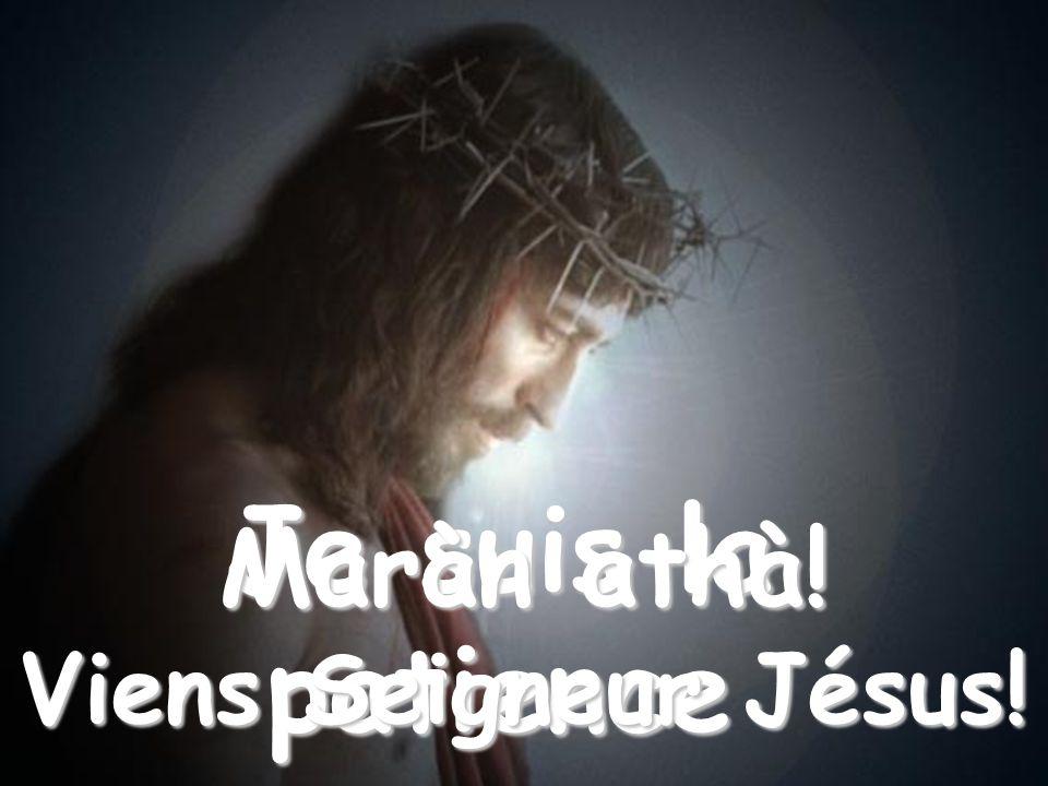 Quand tu perds la sérénité et tu sens que tes nerfs ne tiennent plus, invoque-moi: Je suis la patience Maràn athà! Viens Seigneur Jésus!