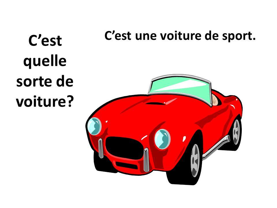 Cest quelle sorte de voiture? Cest une voiture de sport.