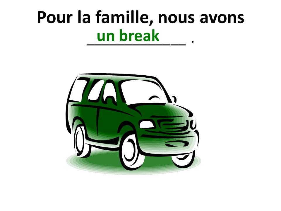 Pour la famille, nous avons _____________. un break