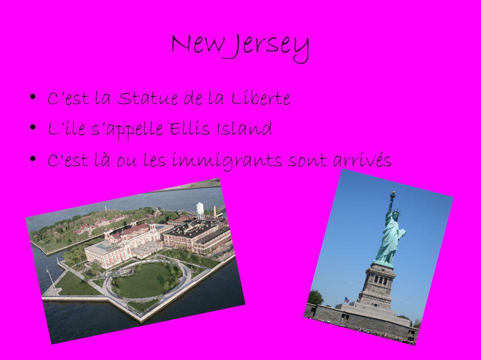 New Jersey Cest la Statue de la Liberte Lile sappelle Ellis Island C'est là ou les immigrants sont arrivés
