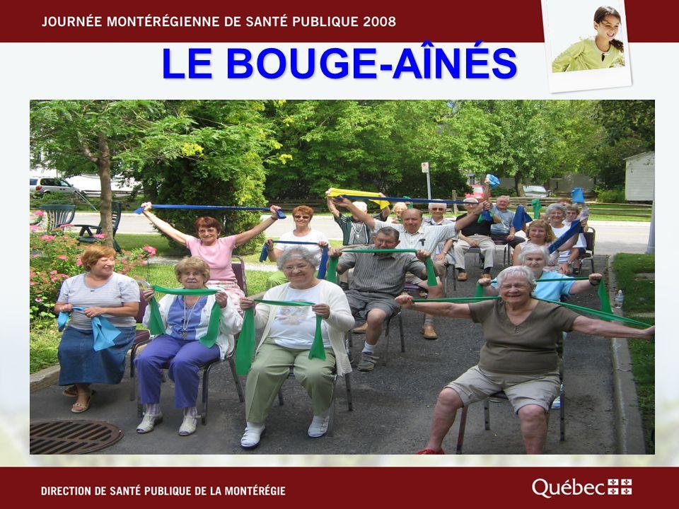 LES OBJECTIFS Mission: Améliorer la qualité de vie des aînés de Saint- Hubert par une pratique régulière dactivité physique (AP).