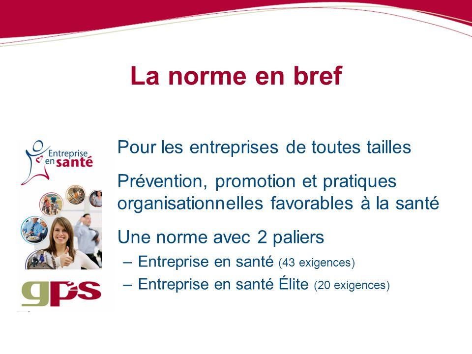 La norme en bref Pour les entreprises de toutes tailles Prévention, promotion et pratiques organisationnelles favorables à la santé Une norme avec 2 p