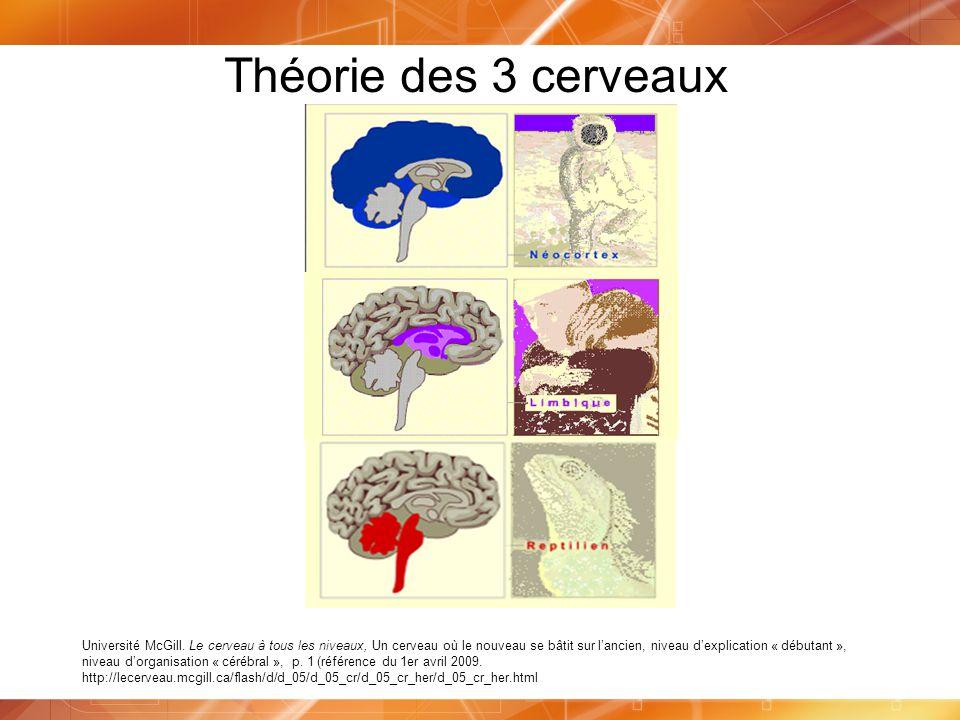 Théorie des 3 cerveaux Université McGill. Le cerveau à tous les niveaux, Un cerveau où le nouveau se bâtit sur lancien, niveau dexplication « débutant