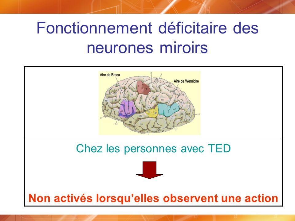 Fonctionnement déficitaire des neurones miroirs Chez les personnes avec TED Non activés lorsquelles observent une action
