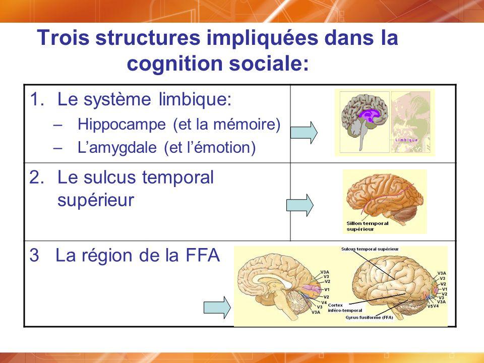 1.Le système limbique: –Hippocampe (et la mémoire) –Lamygdale (et lémotion) 2.Le sulcus temporal supérieur 3 La région de la FFA Trois structures impl