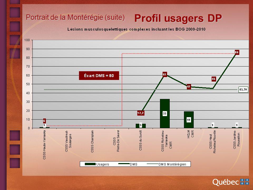 Portrait de la Montérégie (suite) Profil usagers DP CMR