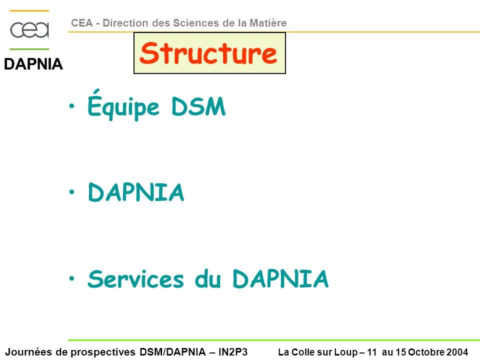 Journées de prospectives DSM/DAPNIA – IN2P3 La Colle sur Loup – 11 au 15 Octobre 2004 DAPNIA CEA - Direction des Sciences de la Matière Structure Équipe DSM DAPNIA Services du DAPNIA