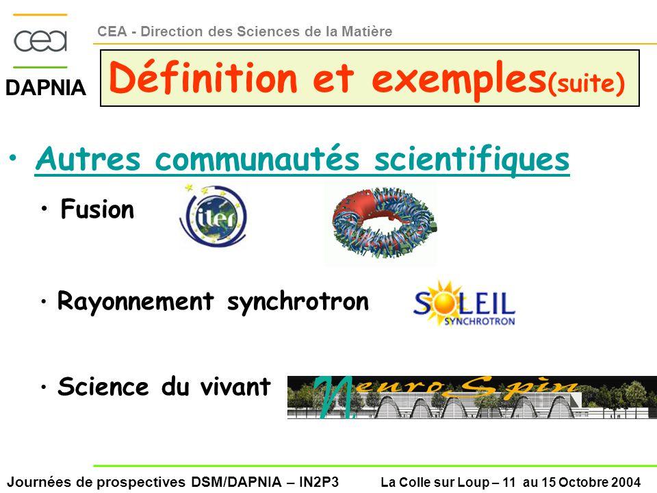 Journées de prospectives DSM/DAPNIA – IN2P3 La Colle sur Loup – 11 au 15 Octobre 2004 DAPNIA CEA - Direction des Sciences de la Matière Définition et exemples (suite) Autres communautés scientifiques Fusion Rayonnement synchrotron Science du vivant