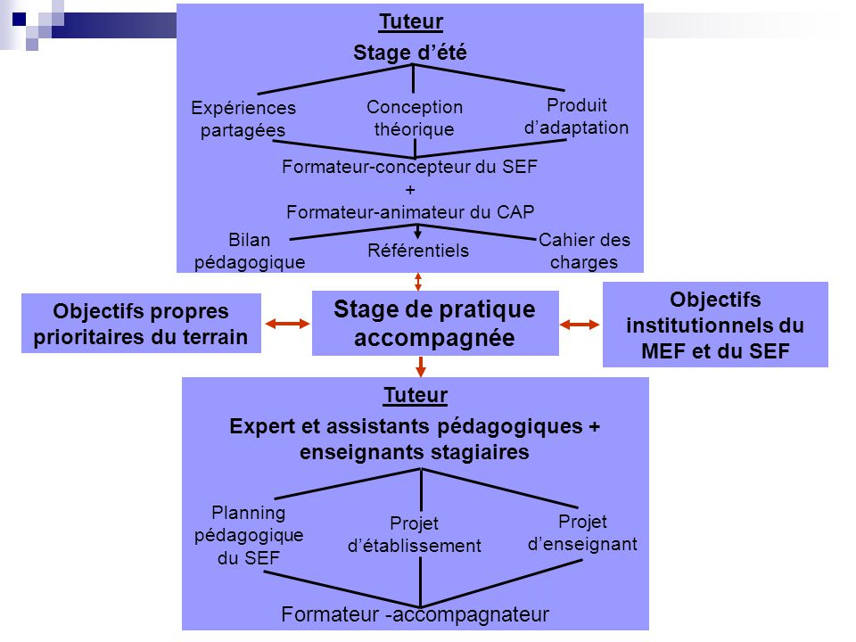 Stage de pratique accompagnée Objectifs propres prioritaires du terrain Objectifs institutionnels du MEF et du SEF Tuteur Expert et assistants pédagog