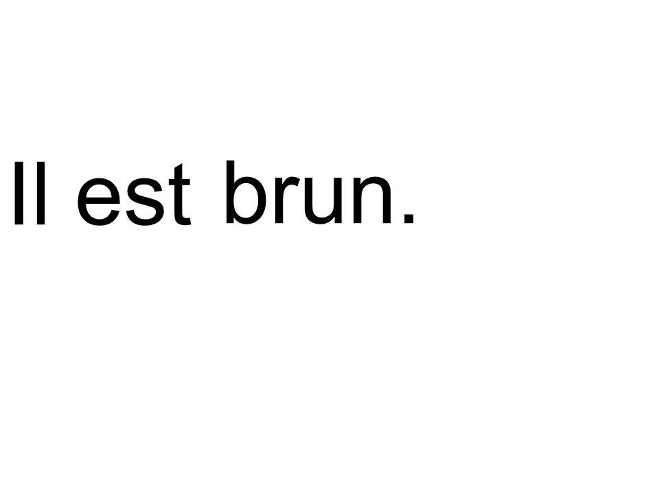brun.Il est