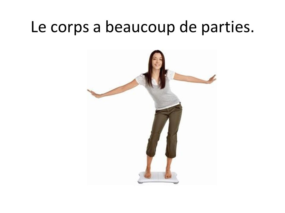 Le corps a beaucoup de parties.