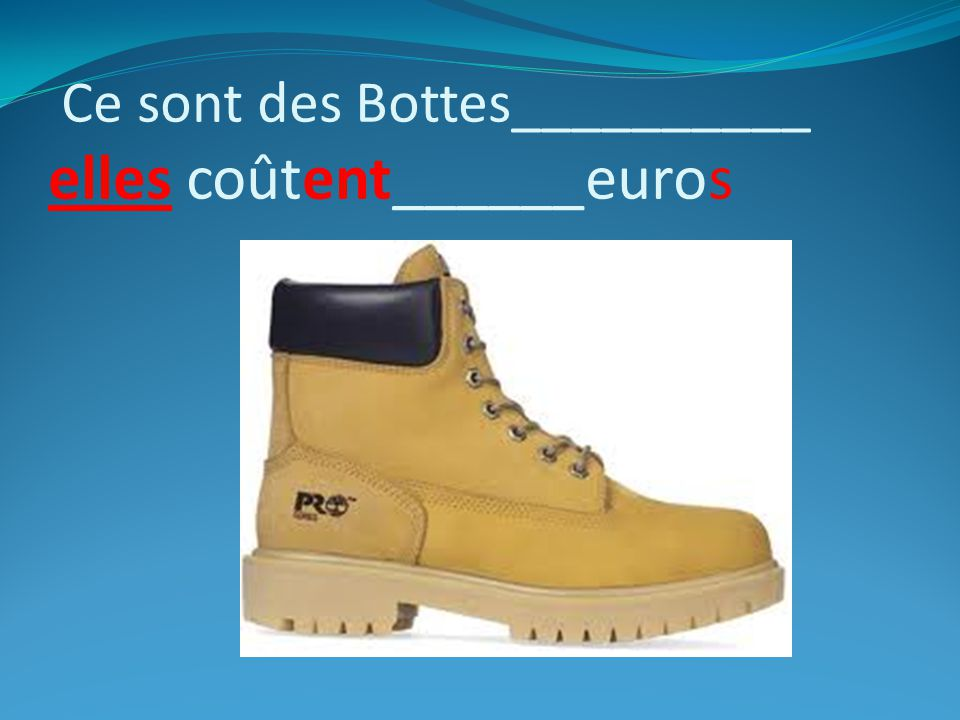 Ce sont des Bottes__________ elles coûtent______euros