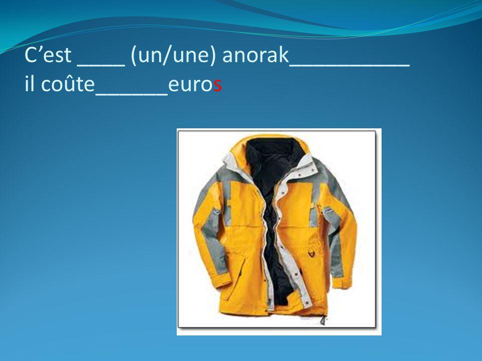 Cest ____ (un/une) anorak__________ il coûte______euros