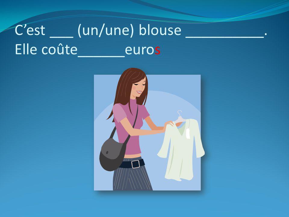 Cest ____ (un/une) T-shirt__________. il coûte______euros