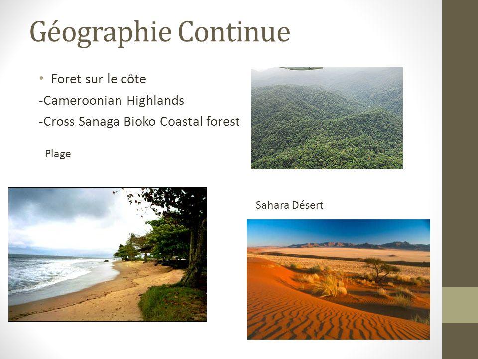Géographie Continue Foret sur le côte -Cameroonian Highlands -Cross Sanaga Bioko Coastal forest Plage Sahara Désert