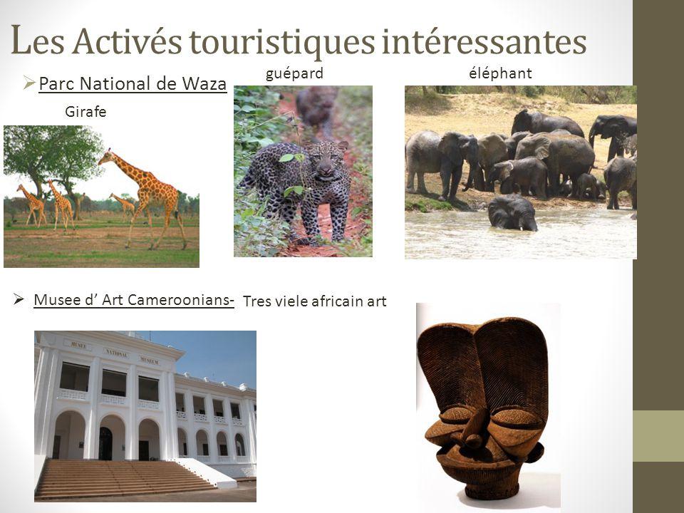 L es Activés touristiques intéressantes Parc National de Waza Girafe guépardéléphant Musee d Art Cameroonians- Tres viele africain art