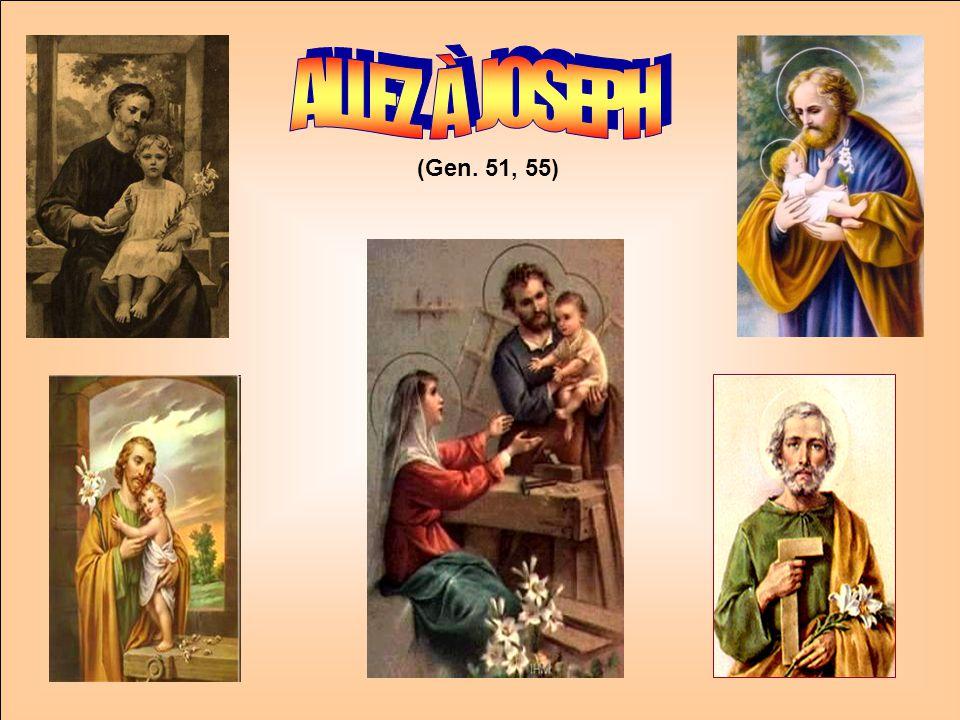 .. Connaissez-vous ces DEUX DICTONS: 1. À la Saint-Joseph, beau temps Promesse de bon an. 2. Chaud à la Saint-Joseph Lété sera bref. Voici la fleur de