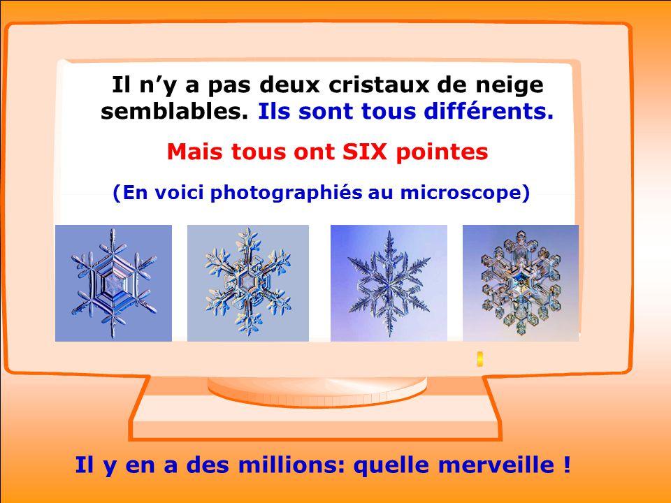..Il ny a pas deux cristaux de neige semblables. Ils sont tous différents.