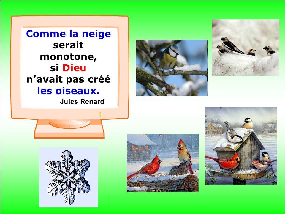 .. Comme la neige serait monotone, si Dieu navait pas créé les oiseaux. Jules Renard