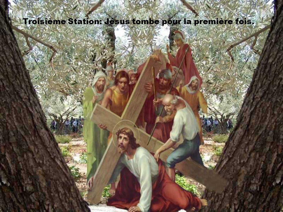 Seigneur, Ton amour nous aide à porter une croix qui nous écrase. en suivant ton chemin de croix et d'espérance, donne-nous de trouver la confiance et