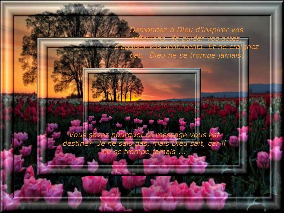 Souvent, nous nous plaignons de la vie et des choses apparemment néfastes qui nous arrivent, en oubliant que rien n'est au hasard et que tout a un but